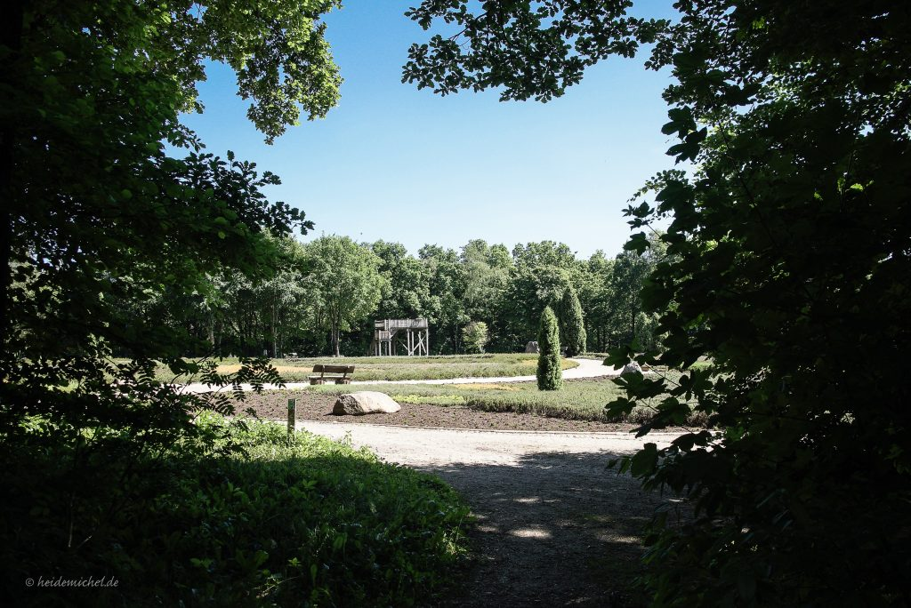 Aus dem Wald in den Heidegarten